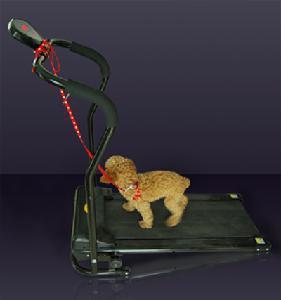 China Auto Pet Treadmill wholesale