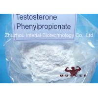 China Medicinal Fat Burning Steroids Testosterone Propionate For Women CAS 1255-49-8 wholesale