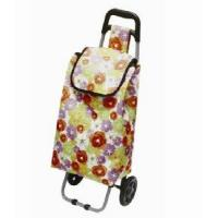 China Trolley Shopping/Travelling Bag Cart (WH-2043) wholesale