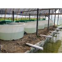 China 3500 liter  No Collapsible aquaculture Circle indoor commercial PE raised plastic fish ponds wholesale