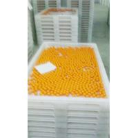 China Anti High Temprature Plastic Drying Trays Pe Material For Drying Freezing Baking on sale