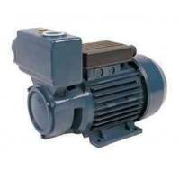 China TPS -70 Series Domestic Electric Motor Water Pump 0.75HP/0.55KW wholesale