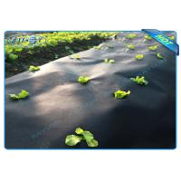 China Black Garden Weed Control Fabric For MaintainTemperature To Benefit Healthy Growth wholesale
