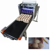 China 120w Digital Industrial Egg Jet Printer With Six Laser Exclusive Use Ink wholesale