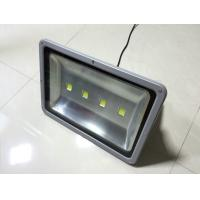 China Ultra bright Led flood light 250w robust housing with Bridgelux chips& driver wholesale