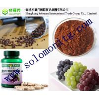 China Water Soluble Grape Seed Extract Grape Skin Extract (Vitis vinifera L) wholesale
