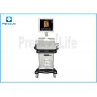 China Hospital PL-2200 Color Doppler Medical Ultrasound Machine / Equipment wholesale