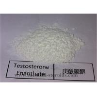 China 99.5% Purity USP Standard Steroid Testosterone Enanthate CAS 315-37-7 for Bodybuilding wholesale