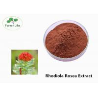 China Chinese Herbal Extract Rhodiola Rosea Extract Rosavins 3% for Male Health wholesale