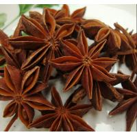 China 98% Shikimic Acid,Star anise extract,Star anise extract powder,Star anise P.E. wholesale