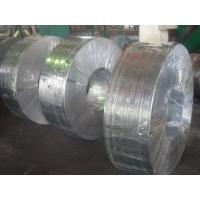 China Grade 50, 490, SGC, Q195, SGCC, SGCD spangle Hot Dipped Galvanized Steel Strip / Strips wholesale