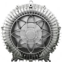 China 750w Regenerative Air Blower For Jzcuzzi And Spa Aeration 1 Year Warranty wholesale