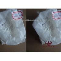 China White Powder Dehydroisoandrosterone (DHEA) For Body Building CAS 53-43-0 wholesale