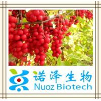 China Nuoz supply Fructus Schisandra Chinensis P.E. in Brown yellow /Schisandra Chinensis Extracts Schisandrol A 6% HPLC on sale