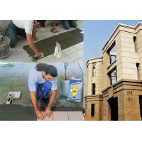Quality Interior / Exterior Wall Ceramic Wall Tile Adhesive Fast Setting for sale