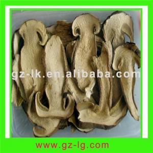 China Boletus edulis mushroom wholesale