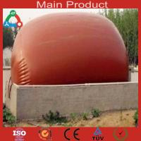 China Family Fue Application biogas plant wholesale