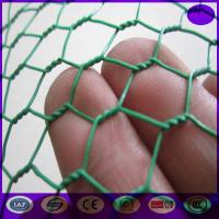 China Green Carbon Steel Chicken Wire Mesh Fencing Electric Poultrynetting from China wholesale