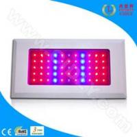 China 55*3W LED Grow Light for Flowers, Garden, Greenhouse, Fruits wholesale