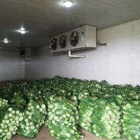 China Vegetable Processing Cold Storage wholesale