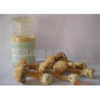 China Agaricus Blazei Murill wholesale