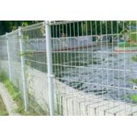 China Double Ringed Protection Fencing wholesale