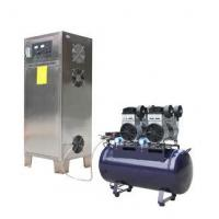 China 100g/h high output ozone generator on sale