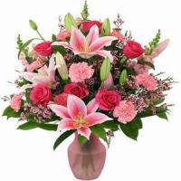 Buy cheap Premium Pinks NO.88 from wholesalers