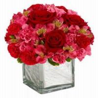 Buy cheap Rosy Romance NO.84 from wholesalers
