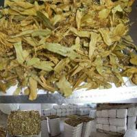 China Linden Flower wholesale