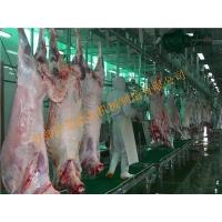 China Carcass processing wholesale
