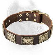 China Fashionable Leather Dog Collar with Vintage Plates for Cane Corso wholesale