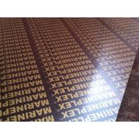 China 4x8 finger joint film faced plywood wholesale