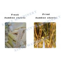 China Spring Bamboo Shoots Dryer/Fruit and Vegetable Processing Plant swirl type dryer wholesale