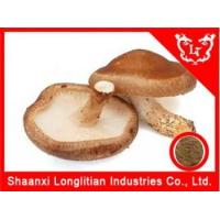 China Liver & Lung Health Shitake extract lentinan benefit wholesale