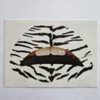 China Custom fashion sexy zebra temporary lip tattoo water transfer wholesale