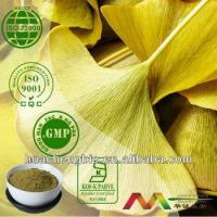 China Natural Ginkgo Biloba Extract wholesale
