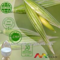 China Natural Avena Sativa Extract wholesale