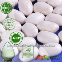 China Natural White Kidney Bean Extract wholesale