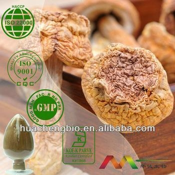 Quality Natural Agaricus Blazei Extract for sale