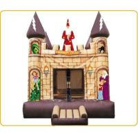 Inflatable Castles CL9-14