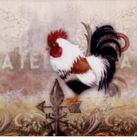 China Paisley Rooster - Alma Lee wholesale