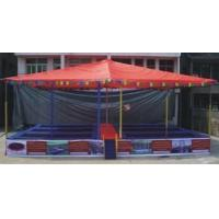 China trampoline with cover wholesale