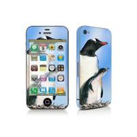 China iPhone 4 skin sticker TN-IPHONE4-0113 wholesale