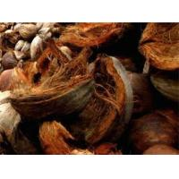 China Cocohusk wholesale