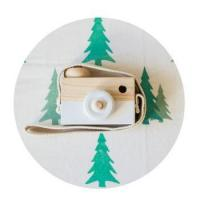 Buy cheap 2018 Custom Baby Wooden Camera Toys from wholesalers