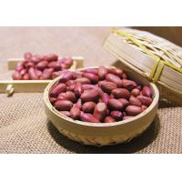 China Peanut Roasted Peanuts With Red Skin wholesale
