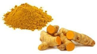 Quality Turmeric root/radix curcumae (whole, slice, cuts, powder, extract powder) for sale