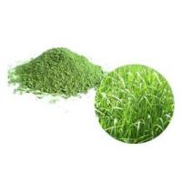 Buy cheap Organic Super Greens Organic Oat Grass Juice Powder from wholesalers