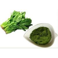 Buy cheap Organic Fruit & Vegetable Powder Spinach powder from wholesalers